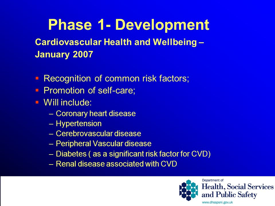 Phase 1- Development Cardiovascular Health and Wellbeing – January 2007 Recognition of common risk factors; Promotion of self-care; Will include: –Coronary heart disease –Hypertension –Cerebrovascular disease –Peripheral Vascular disease –Diabetes ( as a significant risk factor for CVD) –Renal disease associated with CVD