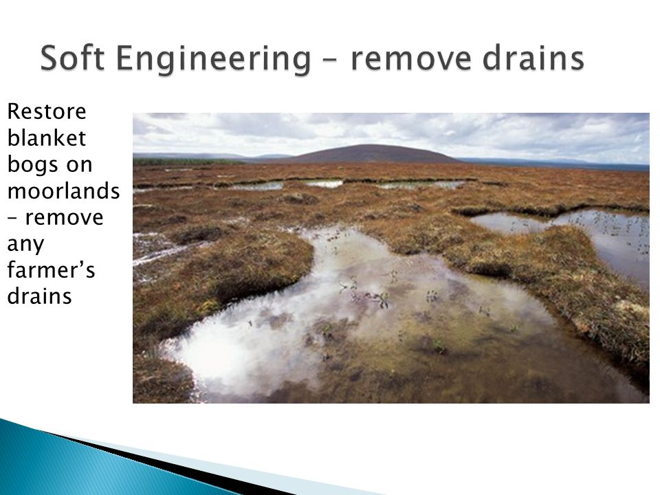 Restore blanket bogs on moorlands – remove any farmers drains
