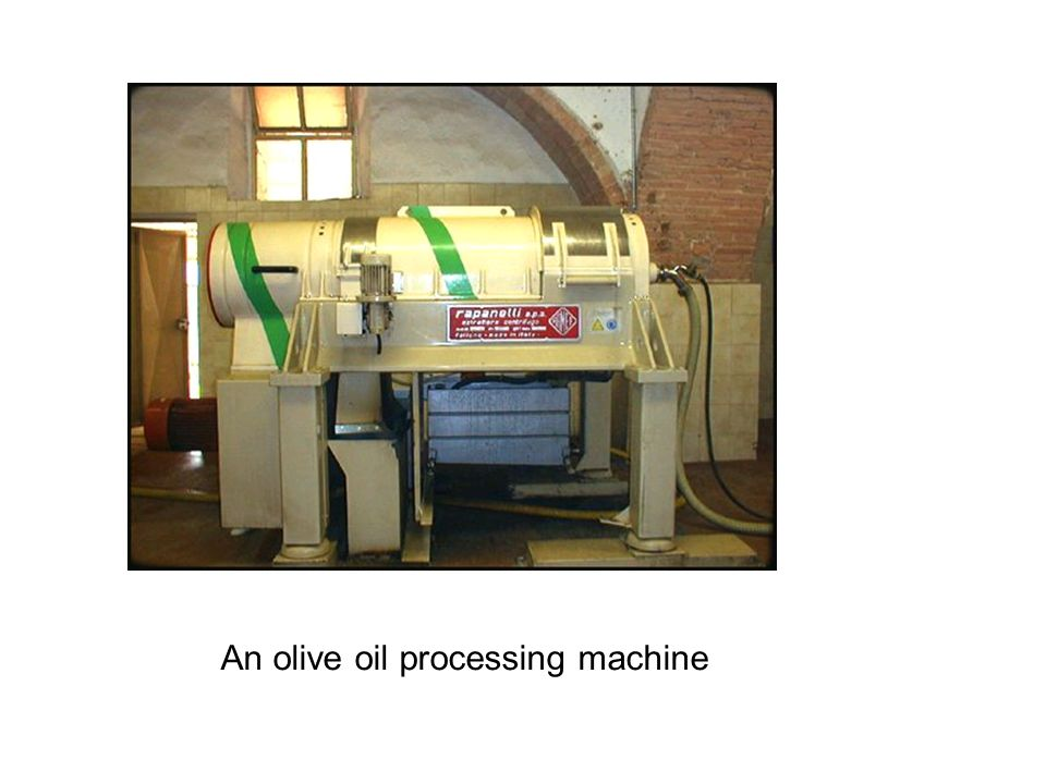 An olive oil processing machine