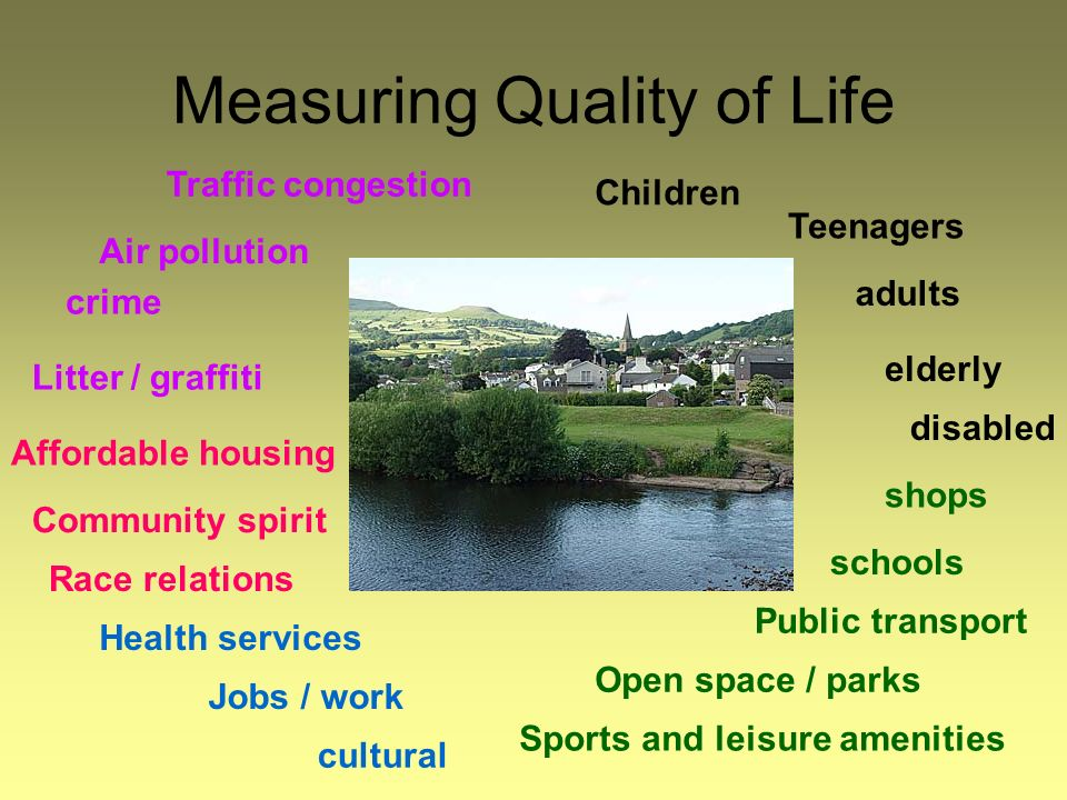 Measuring Quality of Life Traffic congestion Air pollution crime Litter / graffiti Race relations Community spirit Affordable housing cultural Jobs / work Health services Children Teenagers adults elderly disabled shops schools Public transport Open space / parks Sports and leisure amenities