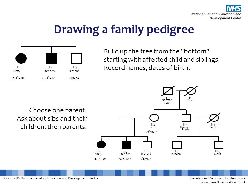 © 2009 NHS National Genetics Education and Development CentreGenetics and Genomics for Healthcare www.geneticseducation.nhs.uk Drawing a family pedigree Build up the tree from the bottom starting with affected child and siblings.