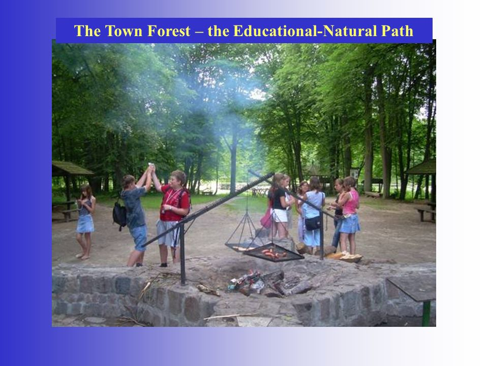 The Town Forest – the Educational-Natural Path