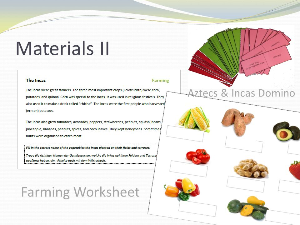 Materials II Farming Worksheet Aztecs & Incas Domino