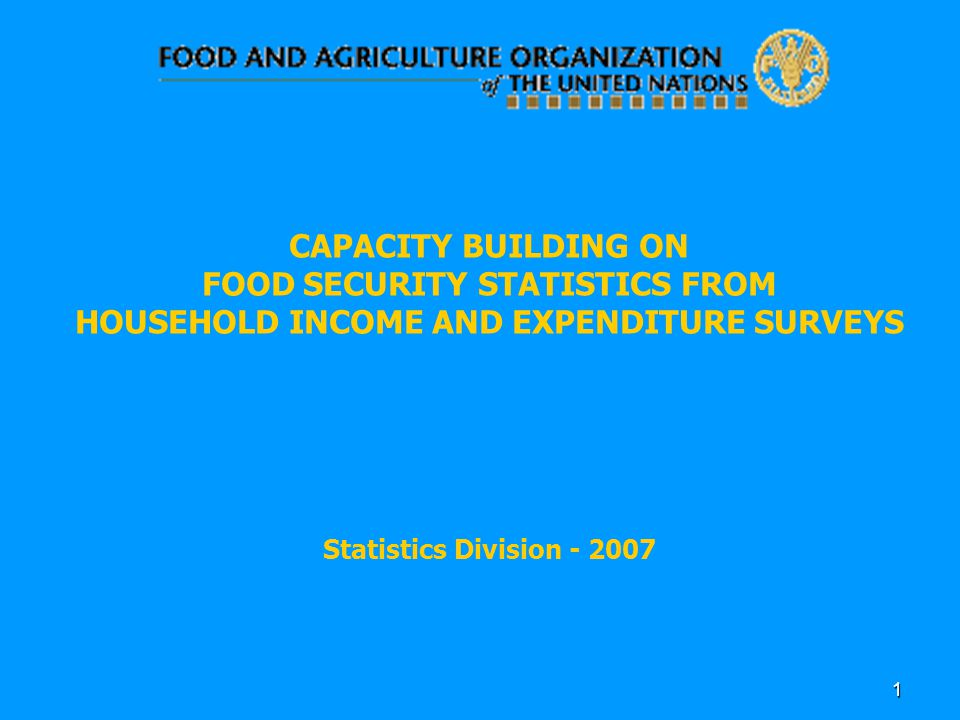 1 CAPACITY BUILDING ON FOOD SECURITY STATISTICS FROM HOUSEHOLD INCOME AND EXPENDITURE SURVEYS Statistics Division