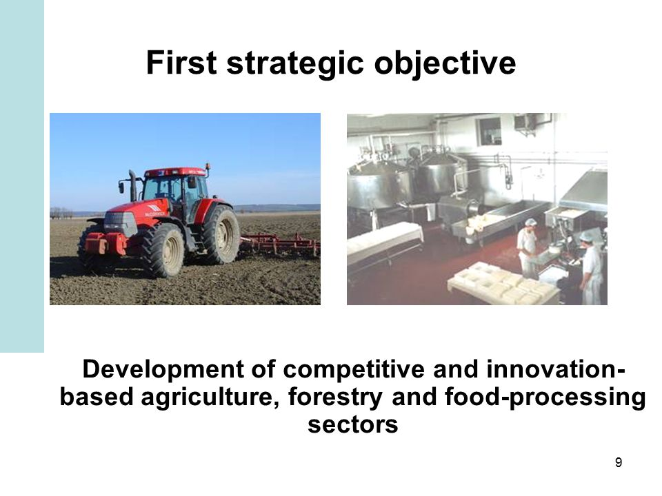 9 First strategic objective Development of competitive and innovation- based agriculture, forestry and food-processing sectors
