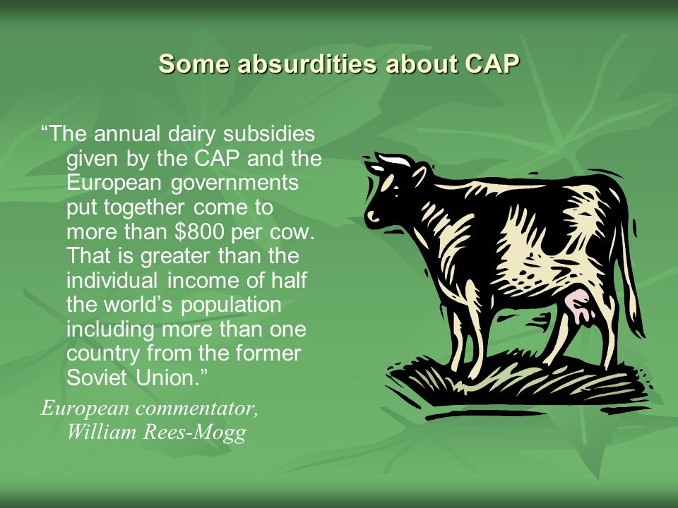 Some absurdities about CAP The annual dairy subsidies given by the CAP and the European governments put together come to more than $800 per cow.