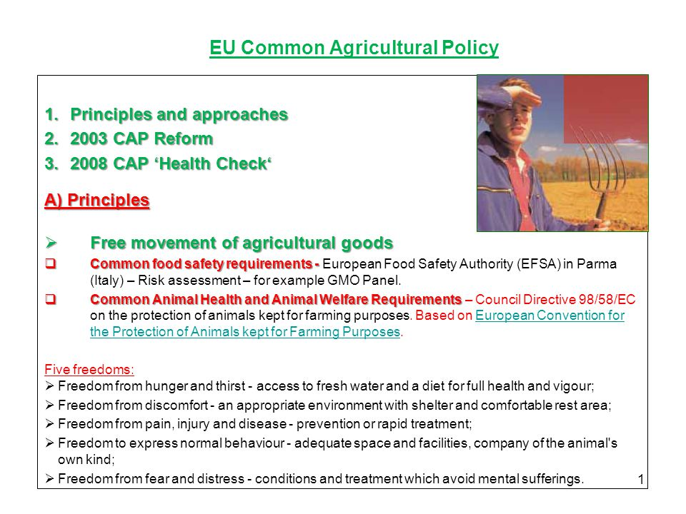 3f96d614dae 1 EU Common Agricultural Policy 1.Principles and approaches 2.2003 CAP  Reform ...