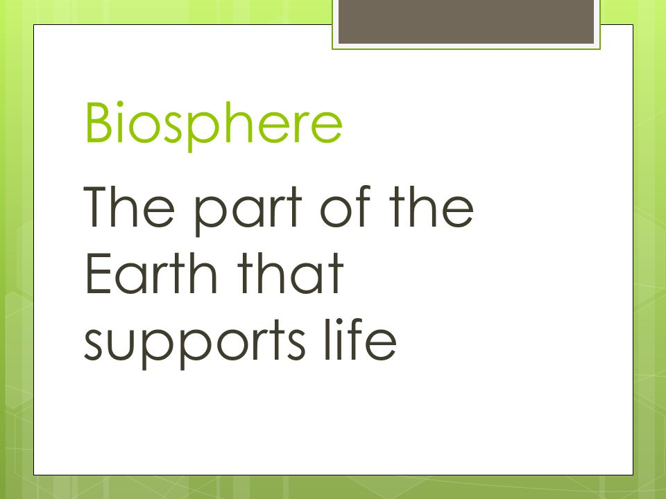 Biosphere The part of the Earth that supports life