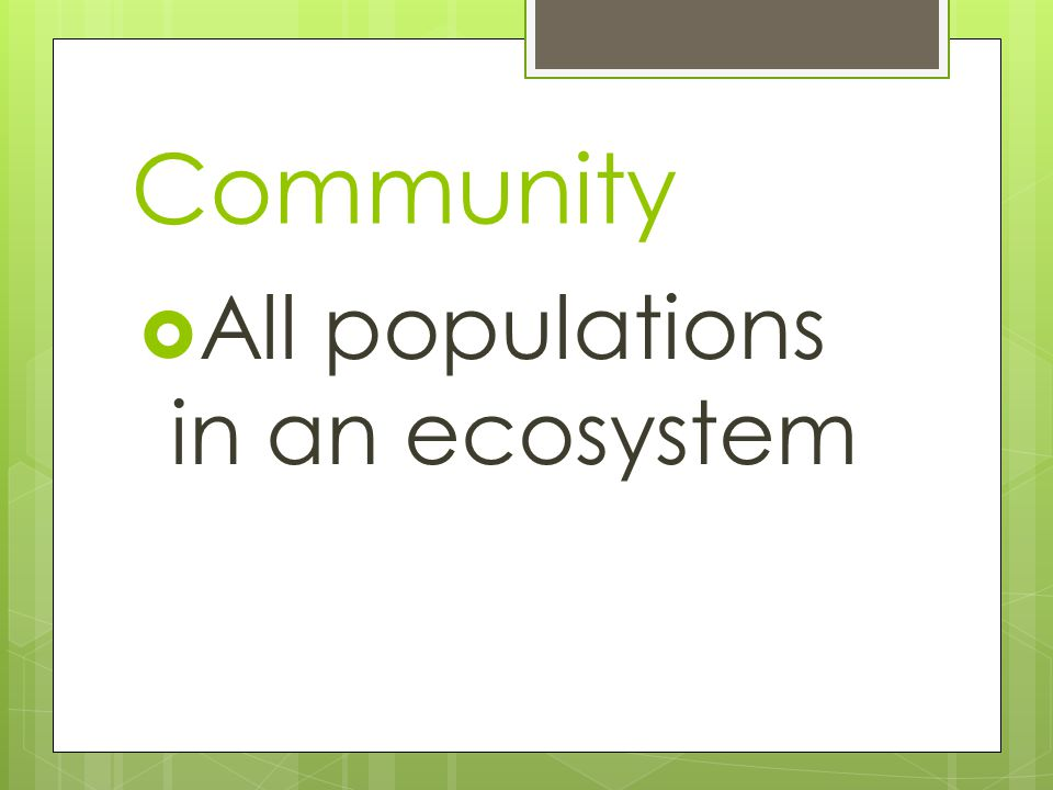 Community  All populations in an ecosystem