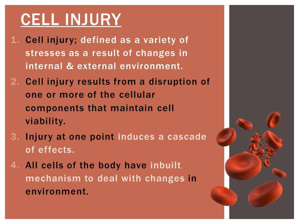 CELL INJURY, CELL DEATH & CELLULAR ADAPTATIONS LECTURE 1 MR