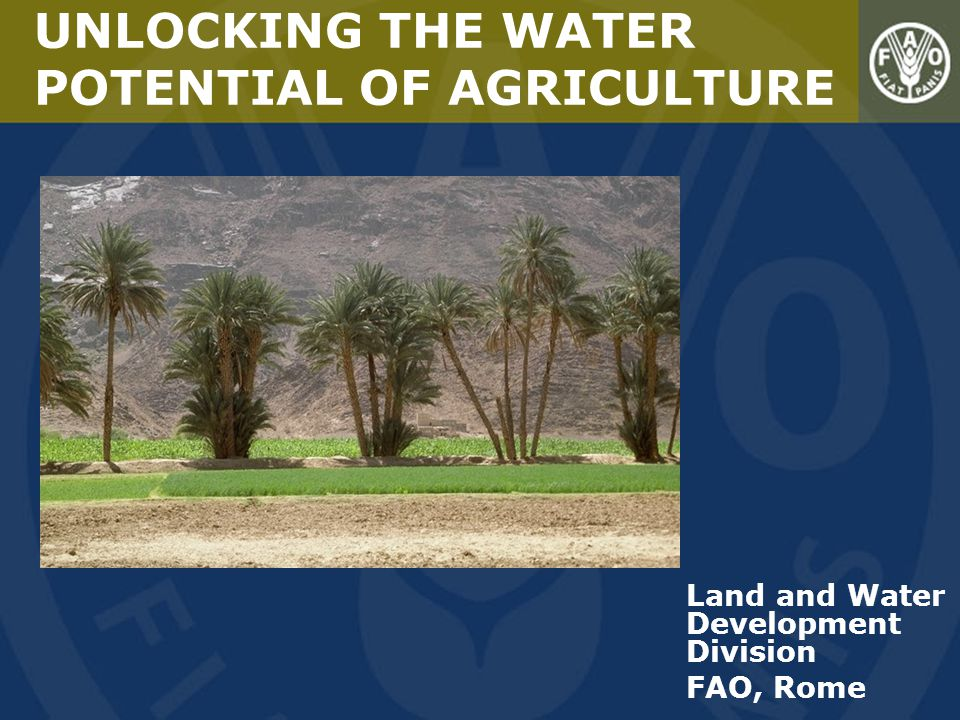 Land and Water Development Division FAO, Rome UNLOCKING THE WATER POTENTIAL OF AGRICULTURE