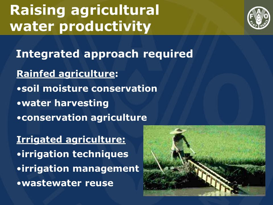Raising agricultural water productivity Integrated approach required Rainfed agriculture: soil moisture conservation water harvesting conservation agriculture Irrigated agriculture: irrigation techniques irrigation management wastewater reuse