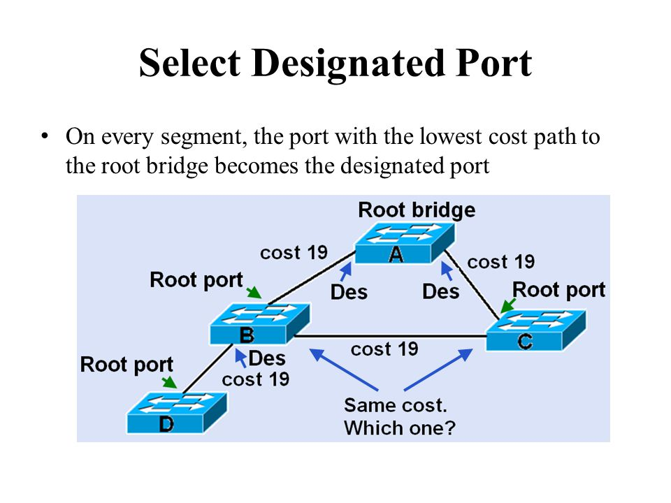 Select Designated Port On every segment, the port with the lowest cost path to the root bridge becomes the designated port