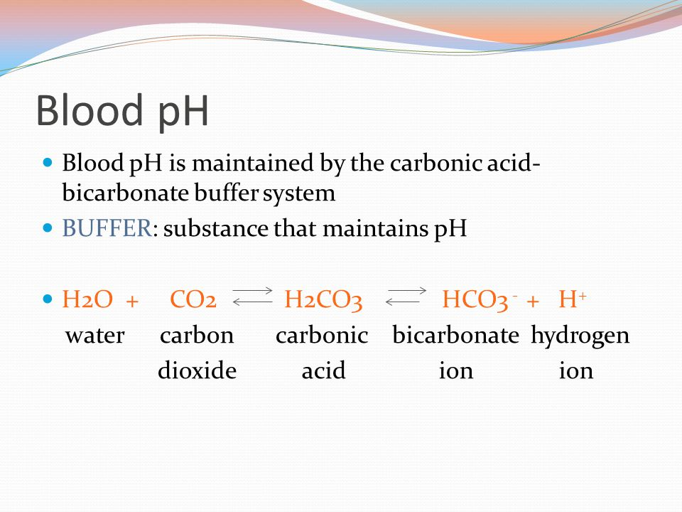 Blood pH Blood pH is maintained by the carbonic acid- bicarbonate buffer system BUFFER: substance that maintains pH H2O + CO2 H2CO3 HCO3 - + H + water carbon carbonic bicarbonate hydrogen dioxide acid ion ion