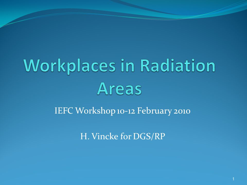 IEFC Workshop February 2010 H. Vincke for DGS/RP 1