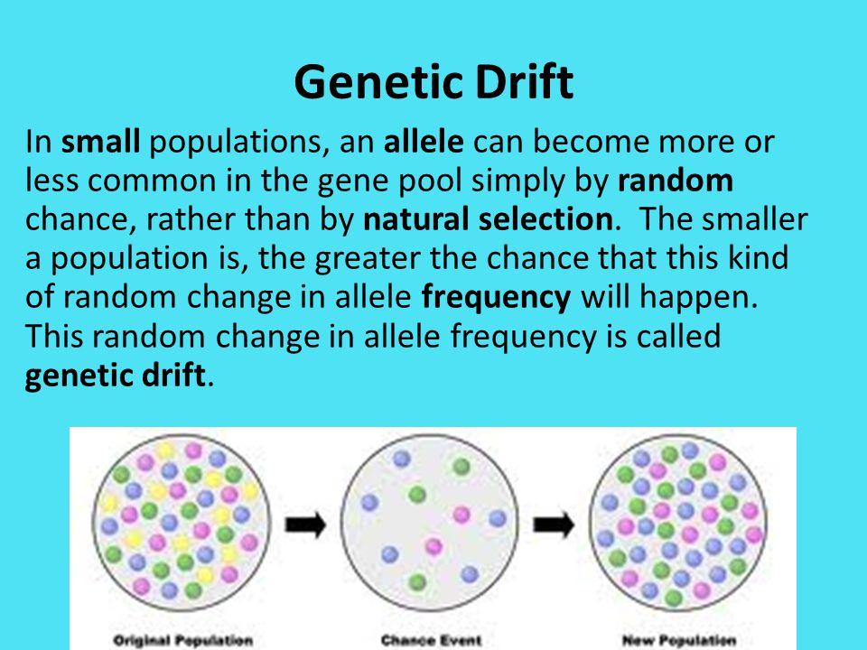 gene pool diversity - 960×720
