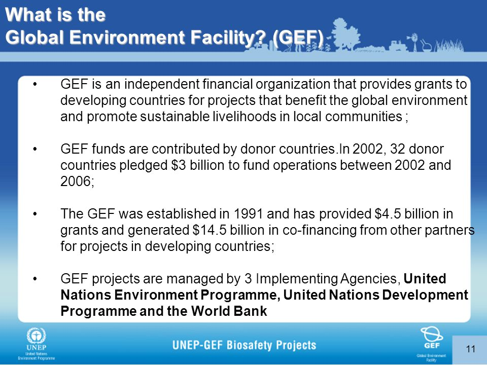 11 GEF is an independent financial organization that provides grants to developing countries for projects that benefit the global environment and promote sustainable livelihoods in local communities ; GEF funds are contributed by donor countries.In 2002, 32 donor countries pledged $3 billion to fund operations between 2002 and 2006; The GEF was established in 1991 and has provided $4.5 billion in grants and generated $14.5 billion in co-financing from other partners for projects in developing countries; GEF projects are managed by 3 Implementing Agencies, United Nations Environment Programme, United Nations Development Programme and the World Bank What is the Global Environment Facility.