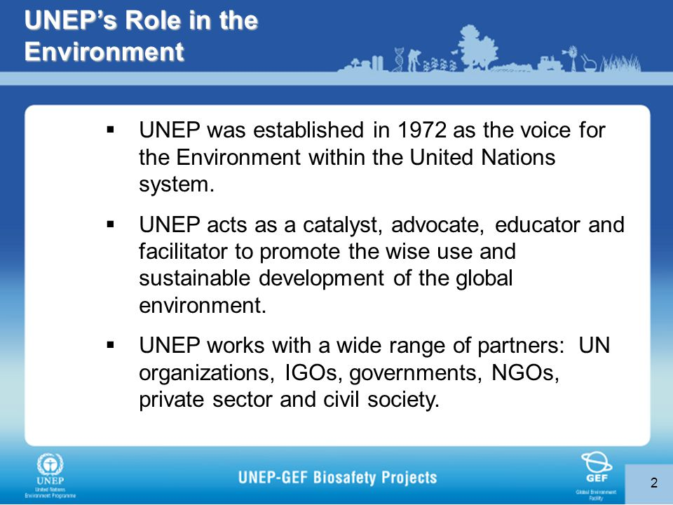 2 UNEP's Role in the Environment  UNEP was established in 1972 as the voice for the Environment within the United Nations system.