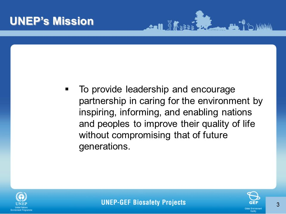 3 UNEP's Mission  To provide leadership and encourage partnership in caring for the environment by inspiring, informing, and enabling nations and peoples to improve their quality of life without compromising that of future generations.
