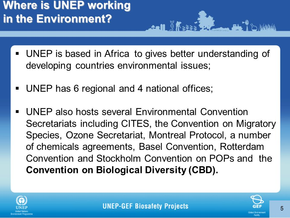 5 Where is UNEP working in the Environment.