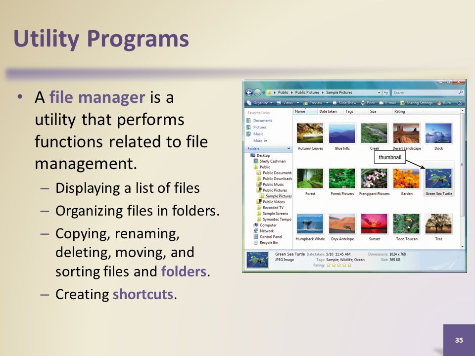 Utility Programs A file manager is a utility that performs functions related to file management.