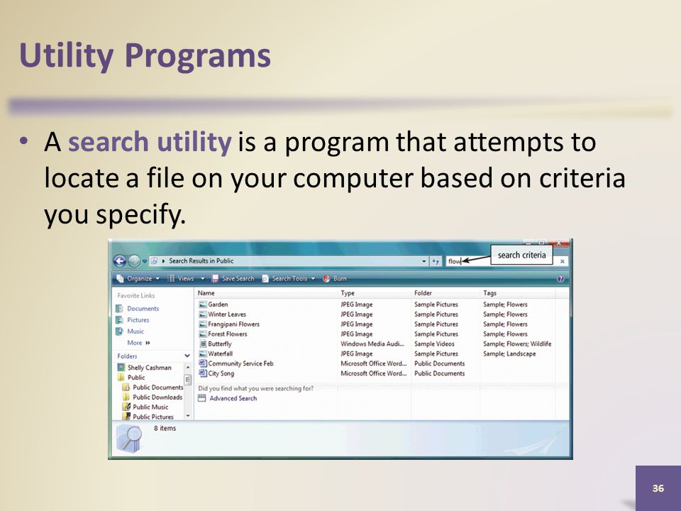 Utility Programs A search utility is a program that attempts to locate a file on your computer based on criteria you specify.