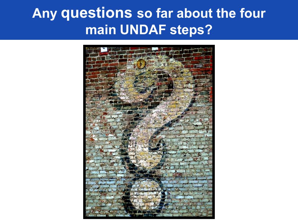 Any questions so far about the four main UNDAF steps