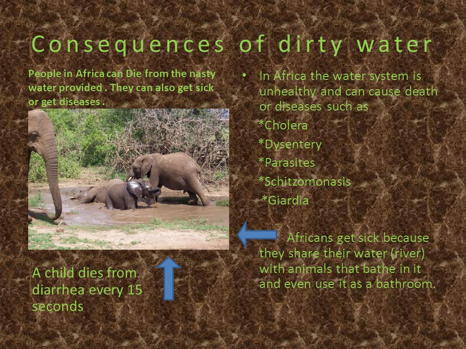 Consequences of dirty water People in Africa can Die from the nasty water provided.