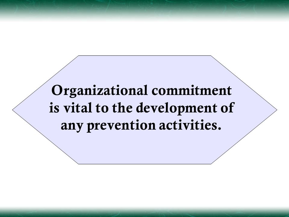 Organizational commitment is vital to the development of any prevention activities.