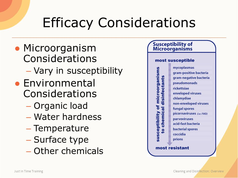 Efficacy Considerations ●Microorganism Considerations – Vary in susceptibility ●Environmental Considerations – Organic load – Water hardness – Temperature – Surface type – Other chemicals Just In Time Training Cleaning and Disinfection: Overview