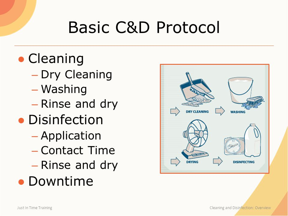 Basic C&D Protocol ●Cleaning – Dry Cleaning – Washing – Rinse and dry ●Disinfection – Application – Contact Time – Rinse and dry ●Downtime Just In Time Training Cleaning and Disinfection: Overview