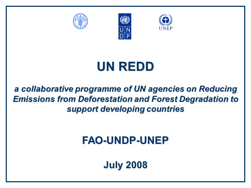 UN REDD a collaborative programme of UN agencies on Reducing Emissions from Deforestation and Forest Degradation to support developing countries FAO-UNDP-UNEP July 2008