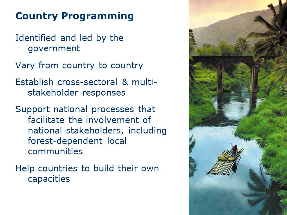 Identified and led by the government Vary from country to country Establish cross-sectoral & multi- stakeholder responses Support national processes that facilitate the involvement of national stakeholders, including forest-dependent local communities Help countries to build their own capacities Country Programming