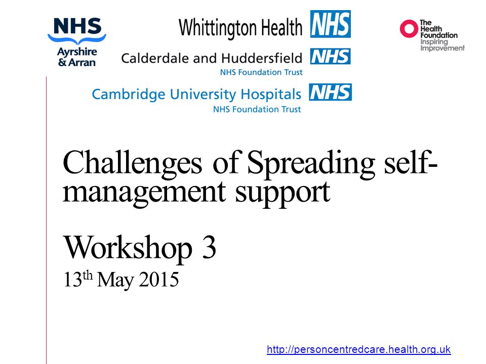 Organisational Journey   Challenges of Spreading self- management support Workshop 3 13 th May 2015
