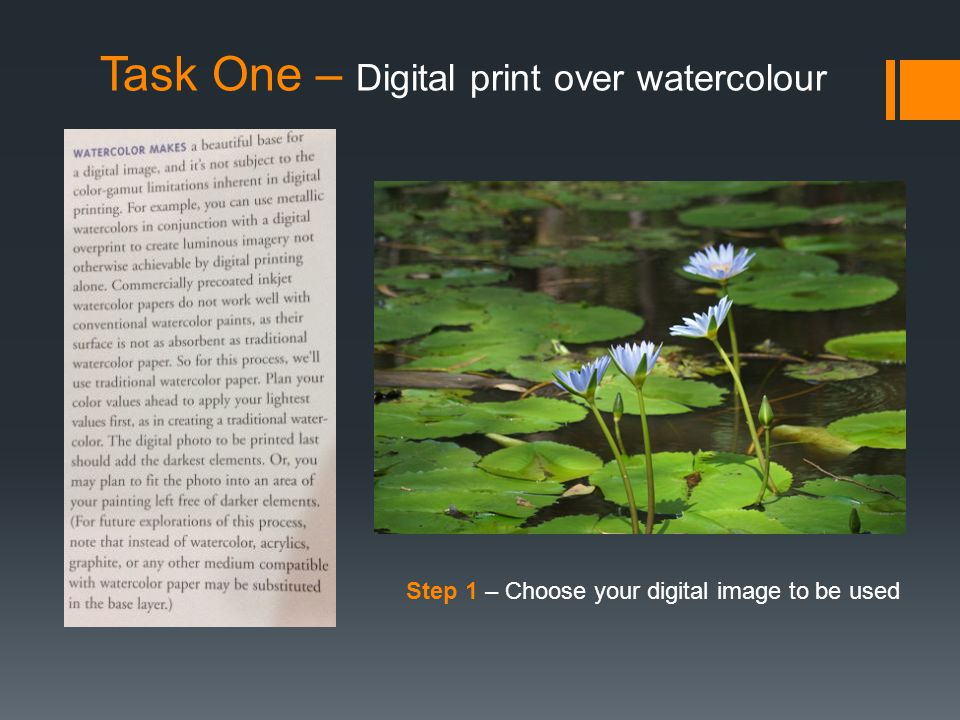 Task One – Digital print over watercolour Step 1 – Choose your digital image to be used