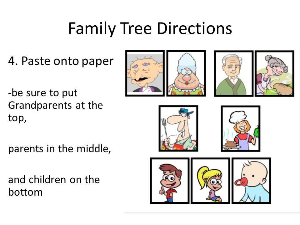 MY FAMILY TREE Ch  11  Family Tree Directions 1 Draw a picture of