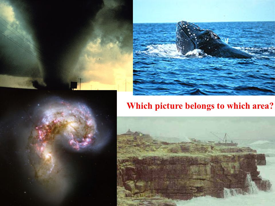 Which picture belongs to which area