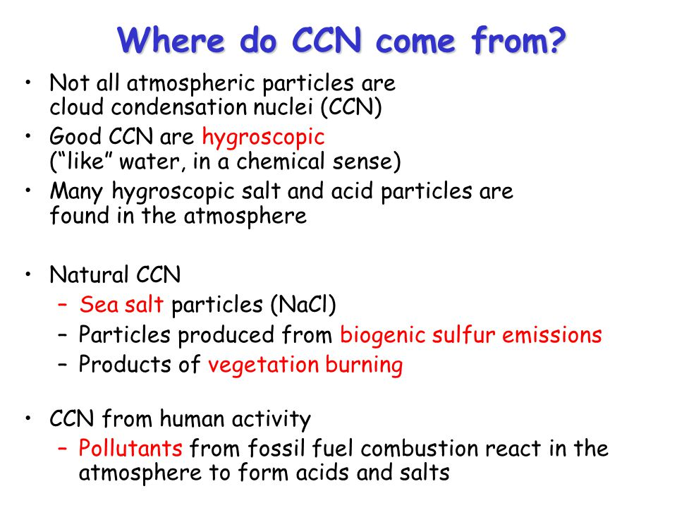 Where do CCN come from.
