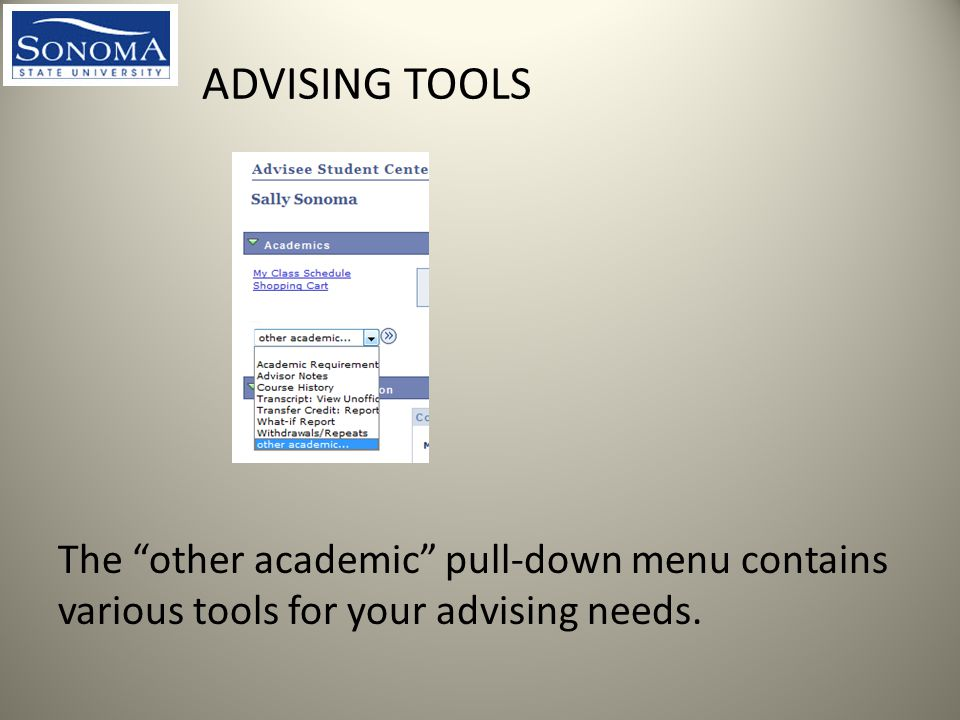 ADVISING TOOLS The other academic pull-down menu contains various tools for your advising needs.