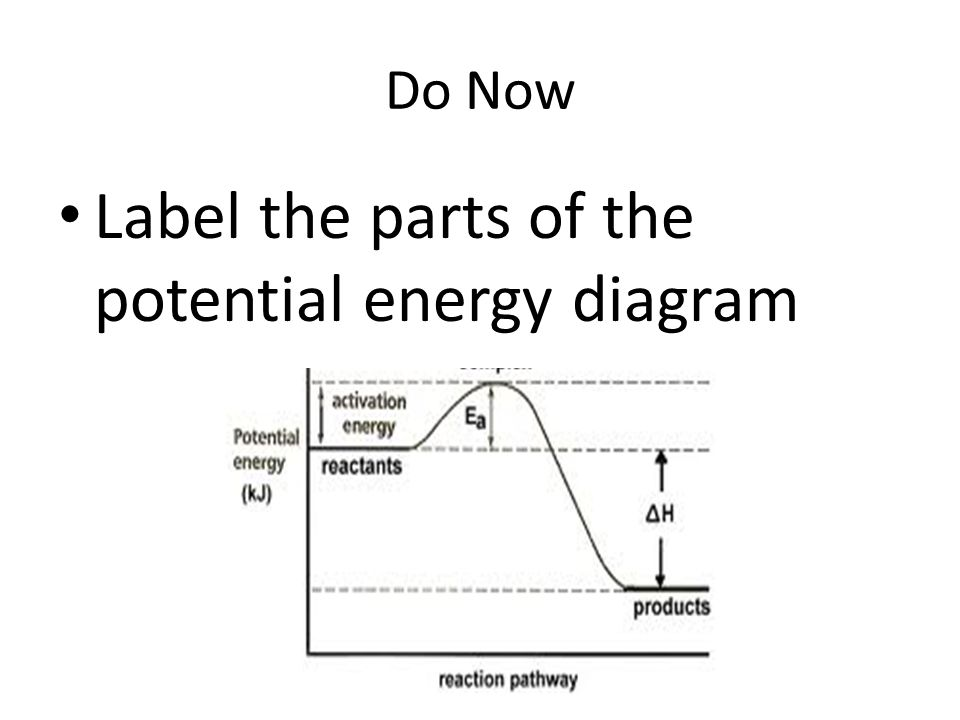 Label Potential Energy Diagram All Kind Of Wiring Diagrams