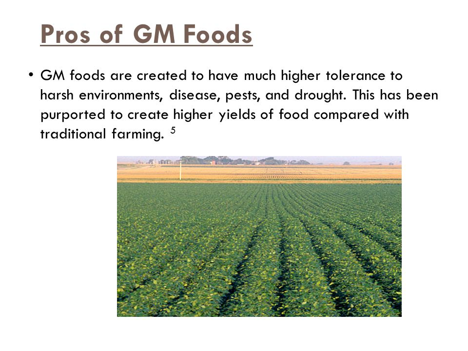 Pros of GM Foods GM foods are created to have much higher tolerance to harsh environments, disease, pests, and drought.