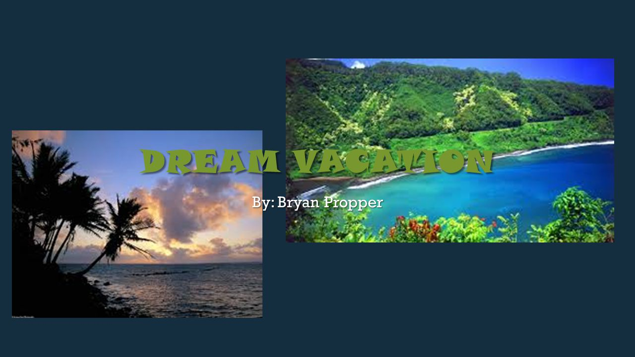 1 DREAM VACATION By Bryan Propper