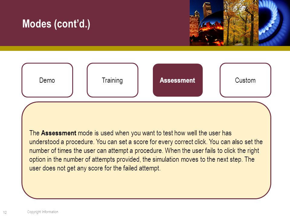 Modes (cont'd.) 12 Copyright Information DemoTraining Assessment Custom The Assessment mode is used when you want to test how well the user has understood a procedure.