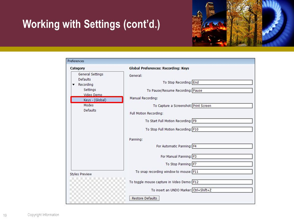 Working with Settings (cont'd.) 19 Copyright Information
