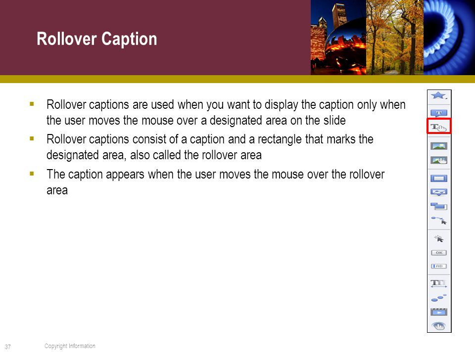  Rollover captions are used when you want to display the caption only when the user moves the mouse over a designated area on the slide  Rollover captions consist of a caption and a rectangle that marks the designated area, also called the rollover area  The caption appears when the user moves the mouse over the rollover area Rollover Caption 37 Copyright Information