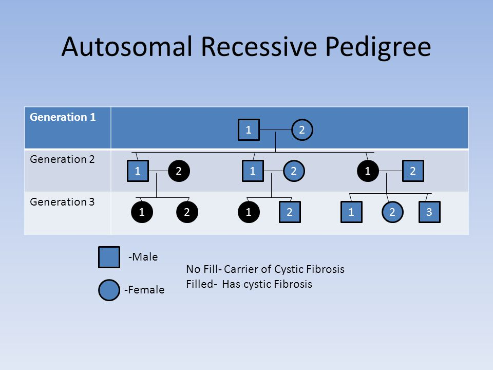Autosomal Recessive Pedigree Generation 1 Generation 2 Generation Male -Female No Fill- Carrier of Cystic Fibrosis Filled- Has cystic Fibrosis