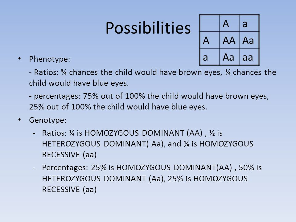 Possibilities Phenotype: - Ratios: ¾ chances the child would have brown eyes, ¼ chances the child would have blue eyes.