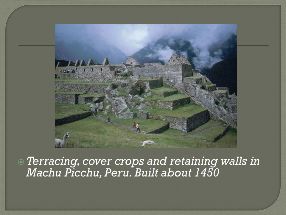  Terracing, cover crops and retaining walls in Machu Picchu, Peru. Built about 1450
