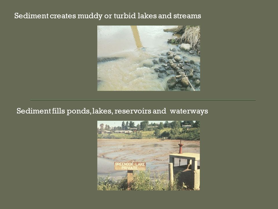 Sediment creates muddy or turbid lakes and streams Sediment fills ponds, lakes, reservoirs and waterways