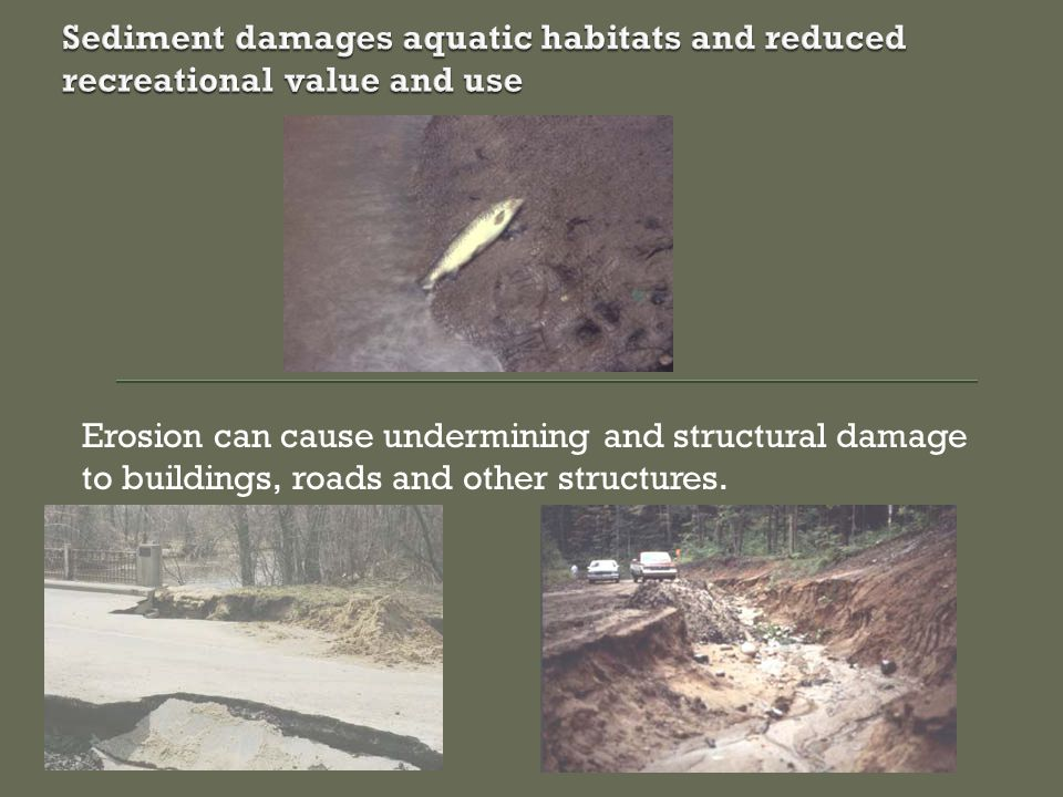 Erosion can cause undermining and structural damage to buildings, roads and other structures.
